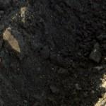 Letters & Dirt