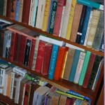 The Evolution of Our Bookshelves