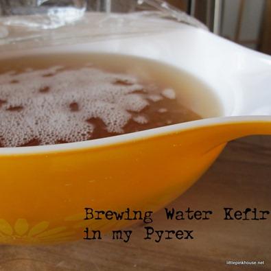 Water Kefir Brewing in a Pyrex Bowl