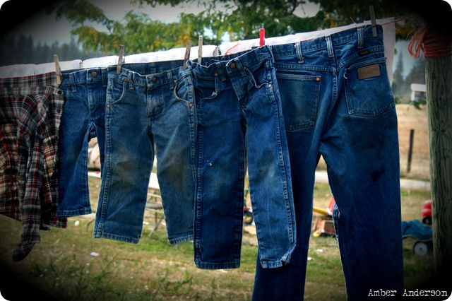 jeans photo by Amber Anderson