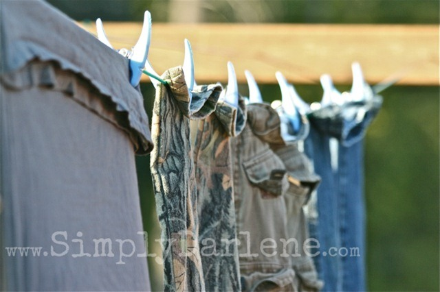clothesline boys SD