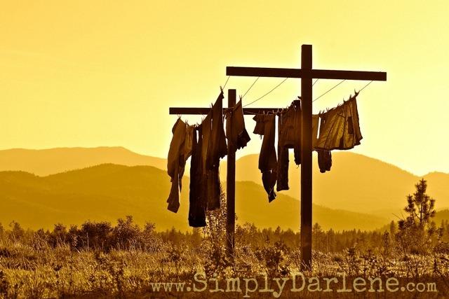 sepia clothesline SD