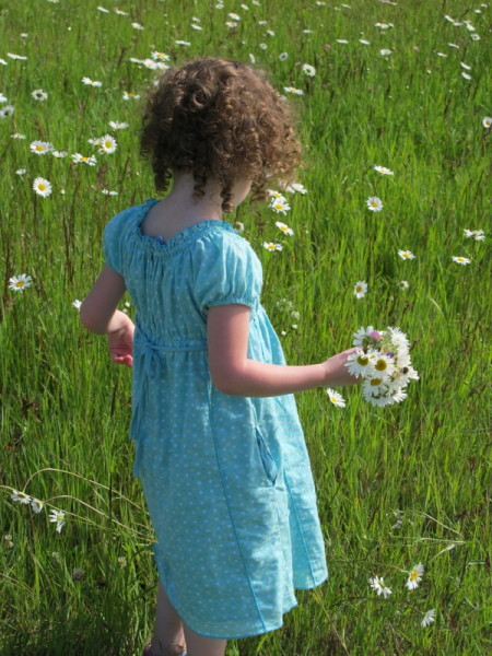 picking daisies