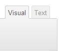 Visual WordPress Editor