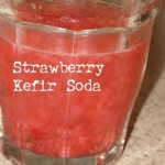 How to Make Probiotic Water Kefir Soda (step by step)