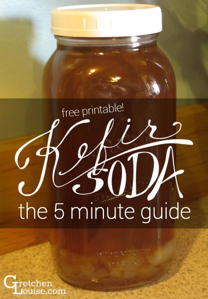 Kefir Soda: the 5 minute guide