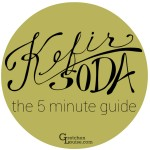 The 5 Minute Guide to Kefir Soda