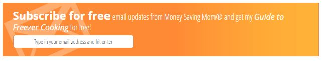 After Post Subscription Widget at Money Saving Mom