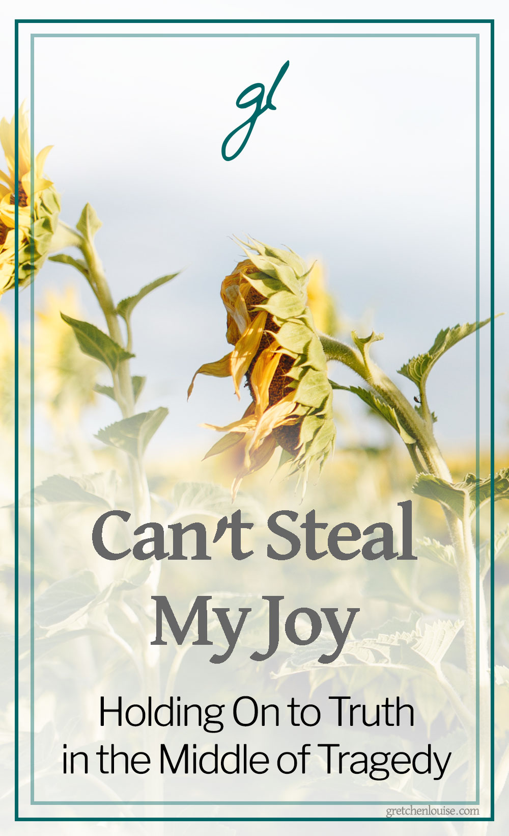 The lessons Bekah shares in Can't Steal My Joy are applicable to everyday life--not just life lived in the midst of incredible tragedy. With humility and vulnerability, Bekah shares their story, interspersed with excerpts of what she wrote from within the raw depths of their brokenness. via @GretLouise