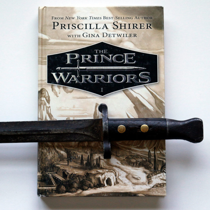 The Prince Warriors by Priscilla Shirer
